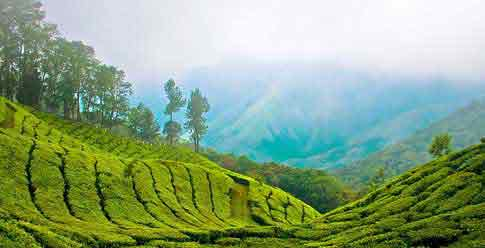 Incredible-Kerala 14 Nights / 15 Days